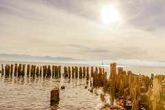 warmth (pat.netwalk) Tags: warmth beige light sky bodensee lindau shine bright copyrightpatrickfrank
