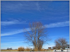Thin Wispy Clouds (Snapshots by JD) Tags: clouds oklahoma westville