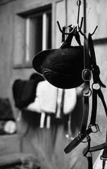 Helmet and tack, Raynham Stables, Nobleton (Richard Wintle) Tags: raynhamstables stable farm tackroom helmet tack leather horse horseback riding equestrian bw blackandwhite monochrome film 135 35mm kentmere 400 pushprocessing pushed adox adonal asahi pentax spotmatic spotmaticf smc takumar 55mm f18 yorkregion nobleton schomberg kingtownship king ontario canada