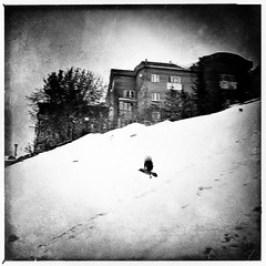 Crow (BNWMONO) Tags: dramatic poetry blackandwhitephotography blackandwhite bw bnw streetstyle streetphotography street streetphoto crow