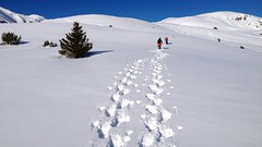 So macht Schneeschuhwandern Spass