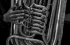 Tuba Player (Klaus Ficker --Landscape and Nature Photographer--) Tags: tuba player music closeup bw blackandwhite black white monochrome schwarz weiss kentuckyphotography klausficker canon eos5dmarkii