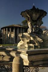 Rome 2010 962
