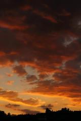 Sunset june 9 2015 024 (Az Skies Photography) Tags: sunset red arizona orange cloud sun black june rio yellow set clouds canon eos rebel gold golden twilight dusk salmon 9 az rico safe nightfall 2015 arizonasky arizonasunset 6915 riorico rioricoaz t2i arizonaskyline canoneosrebelt2i eosrebelt2i arizonaskyscape 692015 june92015