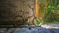 Vintage (C.A.Photogenics) Tags: old school colour abandoned bike contrast vintage artistic sony a6000