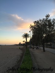 IMG_0292 (@XIII) Tags: sunset sky sun tree apple clouds spain streetphotography cielo barcellona spagna espania catalogna cloudsky malgratdemar iphone6