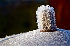 Frozen nipple ... (davidheath01) Tags: beautiful beauty picture photography photograph england uk seasons nikond5100 d5100 depthoffield dof colour color nikon winter water ice frost snow