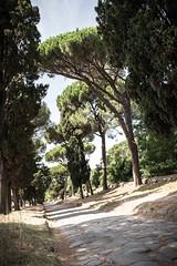 Via Appia Antica (okiaer) Tags: road italy rome nikon antica via appia d600