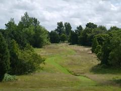 arboretum 2 (blisteredcanker) Tags: castle landscape howard yorkshire arboretum