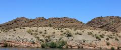 IMG_0097.jpg (DrPKHouse) Tags: arizona unitedstates loco lakehavasucity qcts