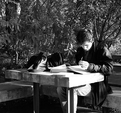 Studying at the Calouste Gulbenkian Garden