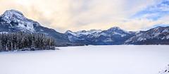 Barrier Lake, kananaskis (Bluesky251) Tags: skyline snow frozen white trees silent blue cloud sunny daytime lake alberta canada kananaskis beautiful winter cold