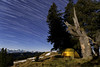 Stay overnight (Brunzolini) Tags: startrail stars sterne sternenhimmel nachthimmel kalt cold night nacht tree trunk baumstrunk fichte meadow weide alps swiss switzerland brunzo lini tent zelt campsite camping wild nature mountain range