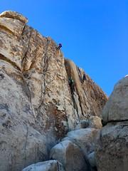 IMG_2480 (steph_abegg) Tags: 2016 california notmyphotos steph