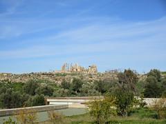 View to principal ruins, Capitol and Basilica, Volubilis, Morocco (Paul McClure DC) Tags: morocco almaghrib fèsmeknèsregion volubilis jan2017 roman architecture historic scenery