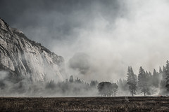 _8105081 (captured by bond) Tags: yosemitenationalpark yosemite nationalpark california californialandscape nikon controlledburn capturedbybond stevebondphotography stevenbond ahwahnee meadow ahwahneemeadow