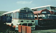 Berresford, Cheddleton OHR 281 & 280 (mj.barbour) Tags: berresford cheddleton ohr 280 281 leyland psuc12 1957 harrington wayfarer silver star wilts dorset