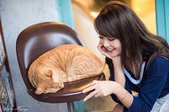 DSC_5490 (Robin Huang 35) Tags: 孫卉彤 candy 板橋書店 書店 文青 portrait lady girl d810 nikon cat 貓