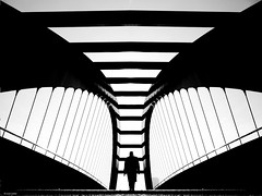 Follow the the angel (René Mollet) Tags: sunny cold blackandwhite bw monchrom monochromphotographie monochrom street streetphotography shadow silhouette bridge zürich toniareal man angel renémollet zuiko penf explorer