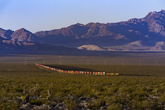 A Spring Morning On Cima Hill (zwsplac) Tags: union pacific up uprr railroad stack train cima hill nipton california mojave desert national preserve new york mountains summer morning light shadows subdivision yucca