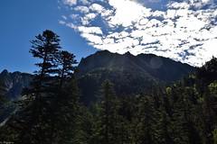 Pyrénées (Mystycat =^..^=) Tags: montagne mountain pyrénées hautespyrénées midipyrénées france ciel nuages clouds sky arbres trees cauterets