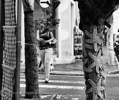 DSC06657 (O KDUKO) Tags: ibitinga artesanato arte sonyilce3000 street pessoas