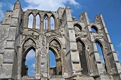 Ruines Abbaye Saint-Bertin Ruins  (4-5)
