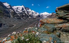 Alpengipfel (novofotoo) Tags: natur gletscher pasterze osterreich grosglocknerhochalpenstrase salzburgkarnten