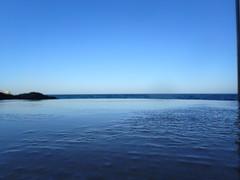 P1031175 (gaby.florit) Tags: enero australiano
