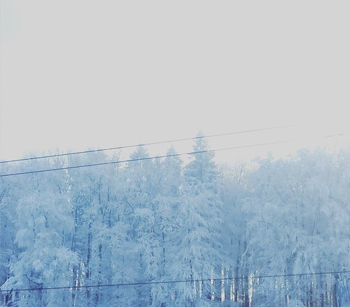 Fading winter