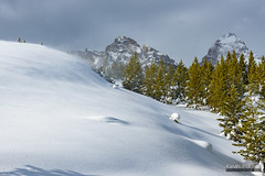 Shifting Wind (kevin-palmer) Tags: nationalpark snowshoeing wyoming winter snow snowy cold nikond750 grandteton grandtetonnationalpark wind windy drift clouds tamron2470mmf28 white tetonmountains trees sunshine