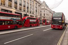 London Dec 2016 (Philippe Clabots (#PhilippeCPhoto)) Tags: philippecphoto nature angleterre brouillard england grandebretagne hiver london londres météo philippec saison season uk unitedkingdom winter