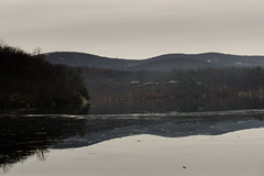 DSC00590-17 (romype77) Tags: sony a6000 ilce6000 pz 1650mm f3556 oss bear mountain state park new york bearmountain newyork wildlife nature natura panorama sevenlakes seven lakes water acqua lago lake bosco forest deer cervo cervi leaf leaves foglia foglie baita cabin albero alberi tree trees animale animali winter inverno flora fauna prato prati erba grass green verde roccia pietra stone rock rocks wood legno albergo hotel inn building edificio brook ruscello fiume hudson river
