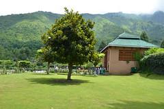 DSC_7613 (rushmurad) Tags: kahmir india dal lake kashmiri
