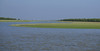 sharif sarwar (8) (Underwater photographer Bangladesh) Tags: sharifsarwar nizum dip nijum hatiya nijhum dwip bangladeshexplorebangladesh bangladeshunderwaternaturebeautifulbangladesh beautifulbangladesh bayofbengal
