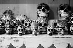 dia de los muertos (1) [explored 12.28.16] (zzra) Tags: skill figurine day dead black white contrast fuji xt1