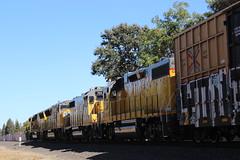 (CaliforniaRailfan101 Photography) Tags: unionpacific up gatxlocomotivegroup gatx gmtx emd ge dirtydirt local sd70m sd59mx gp382 gp402 manifest