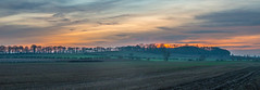 Misty Sunset (Richard Croft136) Tags: panorama selby hambleton north yorkshire trees silhouette fog misty foggy clouds cloudy