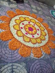 IMG_20170211_191516 (bhagwathi hariharan) Tags: rangoli kolam nallasopara nalasopara rose pooja christmas 2016 festivals mumbai goregaon prithvilandproject 2017 celebrations lordshani lordayyappa