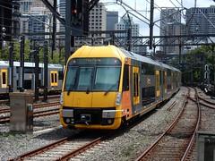 Sydney Trains - Waratahs Sets A67 and A53 depart Sydney Central Station (john cowper) Tags: waratahset a67 a53 centralrailwaystation sydneytrains suburbanrailways sydney newsouthwales