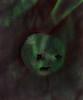 My favorite of the Christmas Cookies made by Lotti - the last one I ate - dieses von Lottchens Keksen habe ich als letztes gegessen - Linzerauge in der Coop Himmelblau Küche, rote Traubenmarmelade, Weintrauben Ernte Garten (hedbavny) Tags: red rot face gesicht linzerauge auge eye wound wunde gebrochen zerbrochen blutrot blut blood green grün stern star handwerk kochen cook backen handarbeit lotti lottchen geburtstag nikolo krampus heilig nikolaus feier birthday advent keks cookies weihnachtskekse ausstechen marmelade jam weintrauben trauben ernte garten garden winegrapes redgrapes blutig bloody portrait porträt textur texture mondgesicht mond moon papier paper backpapier hedbavny ingridhedbavny wien vienna austria österreich harvest baktrennpapier vollmond licht light schatten shadow chiaroscuro