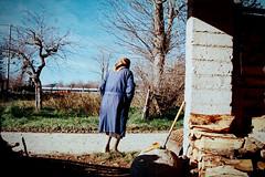 Nonna (-Aldievel-) Tags: wood legna colors nikon italy winter old film italia countryside home molise country family colorful rural grandmother casa color image nonna analogic heimat pellicola analogica matese ektar100