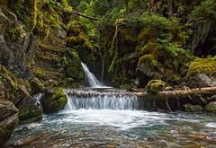 Intoxication (Philip Kuntz) Tags: waterfall falls watermusic virginfalls virgincreekfalls alyeska girdwood alaska