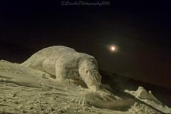 OCT_5407s (savillent) Tags: polar bear snow sculpture moon full dark night tuktoyaktuk northwest territories canada arctic north winter festival landscape photography saville january 2017