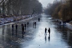 Tübingen im Winter #06 (Gerhard Busch) Tags: bäume eis eisdecke neckar platanenallee spaziergang tübingen winter gefroren