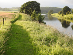 Experience some downtime (Lancashire Lass :) :) :)) Tags: summer river grass fence trees water reflections nature countryside landscape evening riverribble alston lancashire ribblevalley june quote balderstone