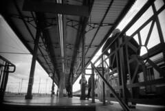 RLLPRG327b (Photeo) Tags: blackandwhite bw film station analog train vanishingpoint wideangle bn verona trainstation 24mm vanishing ilford fp4 ilfordfp4plus125 ricohr1 rolleipregomicron