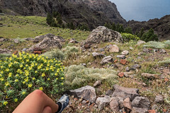 near & far (zoomseb) Tags: mountain fern berg near hill valle rey gran nah knee far knie gomera abhang arure
