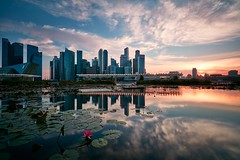 Try a Little Tenderness (Eddie HBH) Tags: longexposure sunset lake flower reflection building museum pond singapore cityscape lotus financial 5dsr