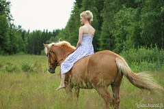 aIMG_6286 (Le-laa) Tags: horse photography equine finnhorse suomenhevonen equinephotography
